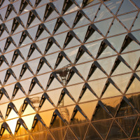 Sahmri Reflections